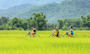15 days from Ho Chi Minh city to Hanoi