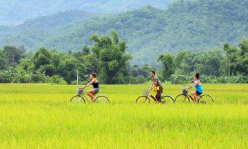 15 days from Ho Chi Minh city to Hanoi