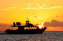 Sunset Cruise & Phu Quoc nightlife