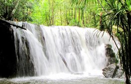 Land tour Phu Quoc
